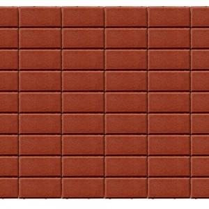 Тротуарная плитка «Прямоугольник» КРАСНЫЙ 40 200x100