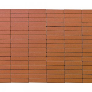 Тротуарная плитка «Прямоугольник» ОРАНЖЕВЫЙ 200х50