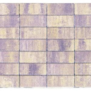 Тротуарная плитка «Прямоугольник» «ПРАЙД» 40 200x100