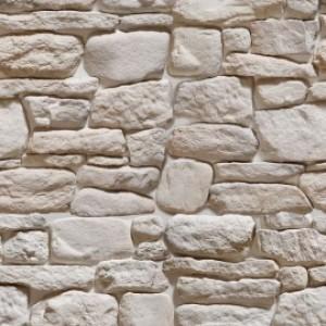 Дикий камень Дублин 120