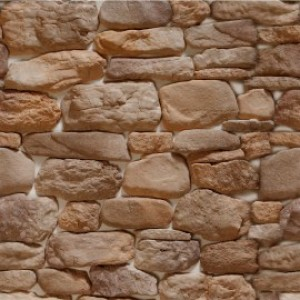 Дикий камень Дублин 122
